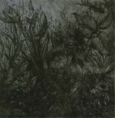 http://www.jtate.co.uk/assets/images/db_images/db_Dark_Garden__Etching__19981.jpg